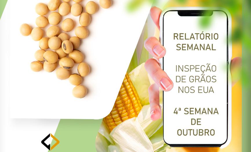 Inspeção de grãos – EUA – 4ª SEMANA DE OUTUBRO